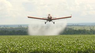 Afinal, o que se sabe sobre o herbicida glifosato?