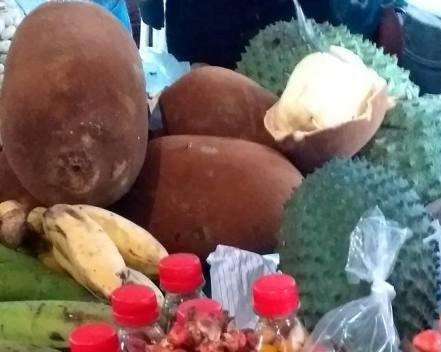 Cupuaçu delicioso ao lado da graviola (Bahia)