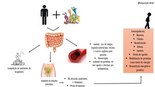 Parasitoses, nutrição e saúde intestinal
