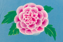 Crisantemo01