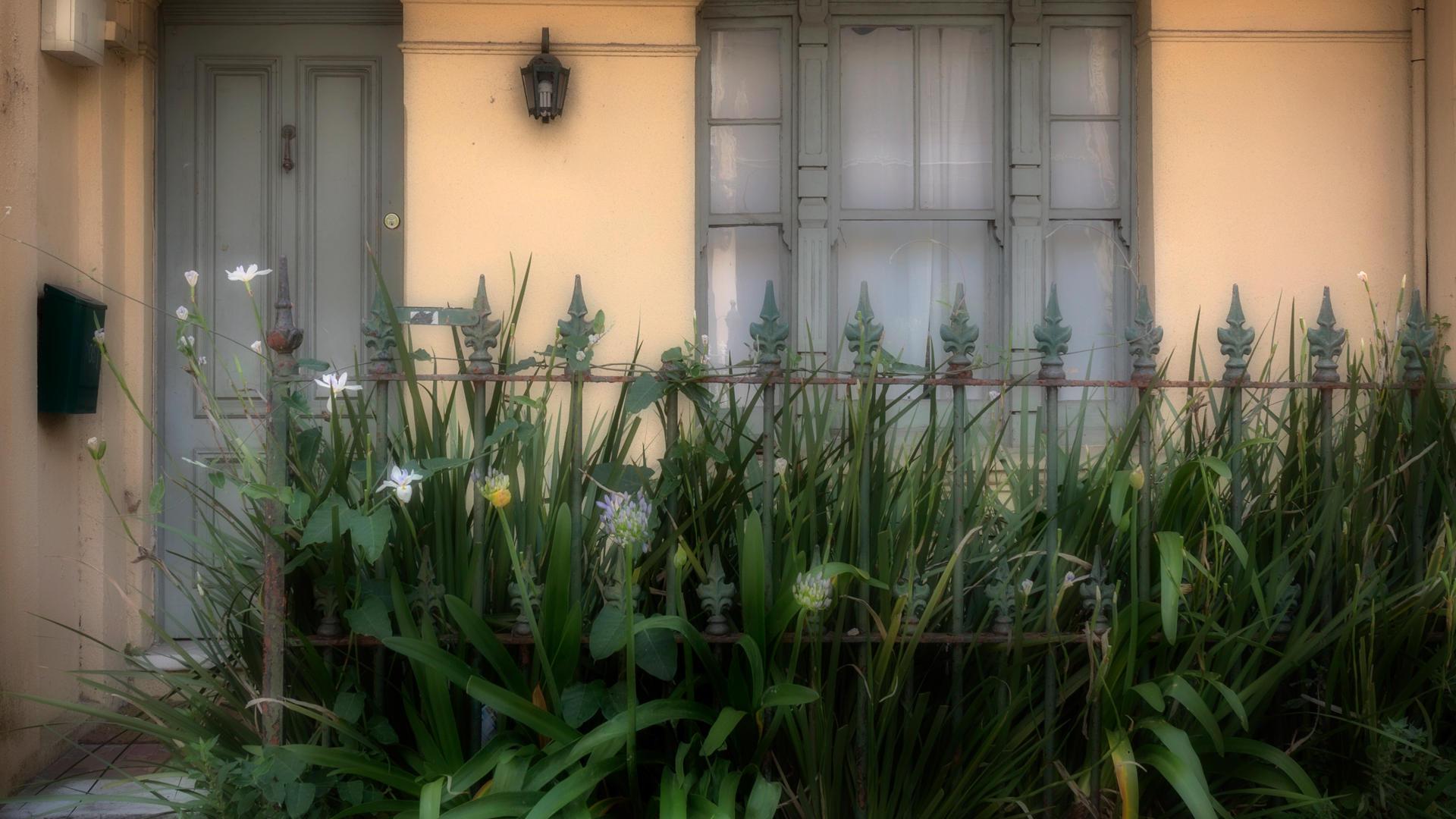 Don_11B3_Dense_Garden