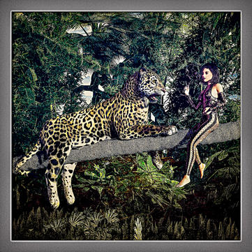 Leopard Conversation