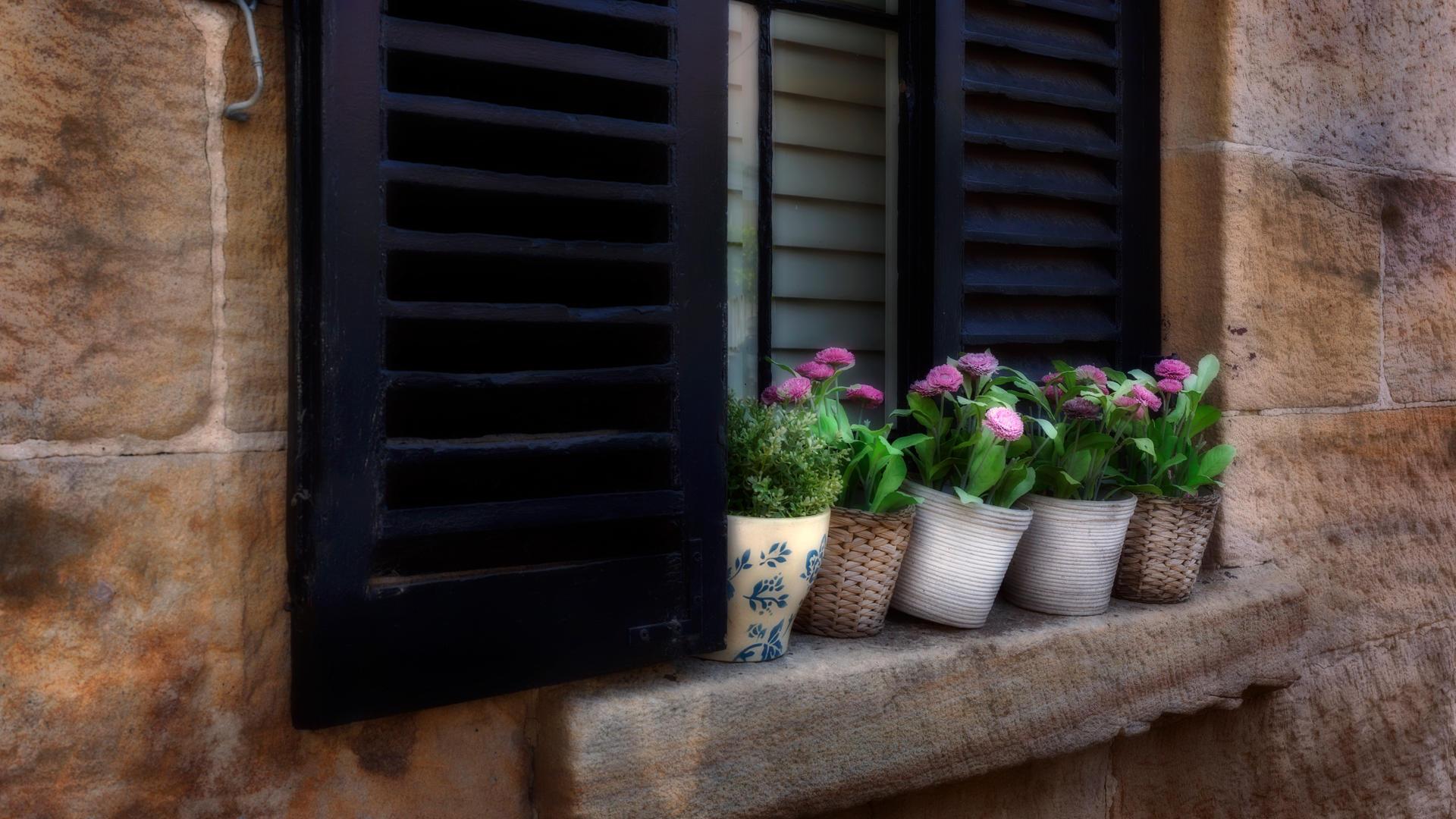 Don_01T1_Window_Pots