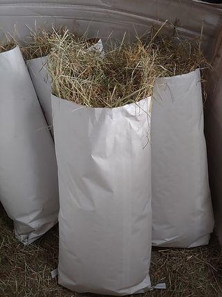 Local Hay.jpg
