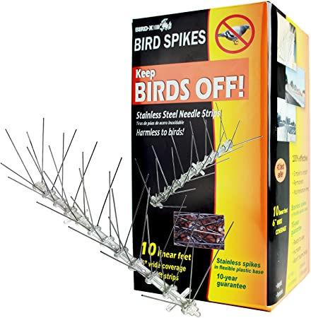 Bird-x bird spikes.jpg