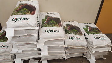 Otter Co-op Lifeline Horse Feed