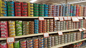 Canned/Wet Cat Food