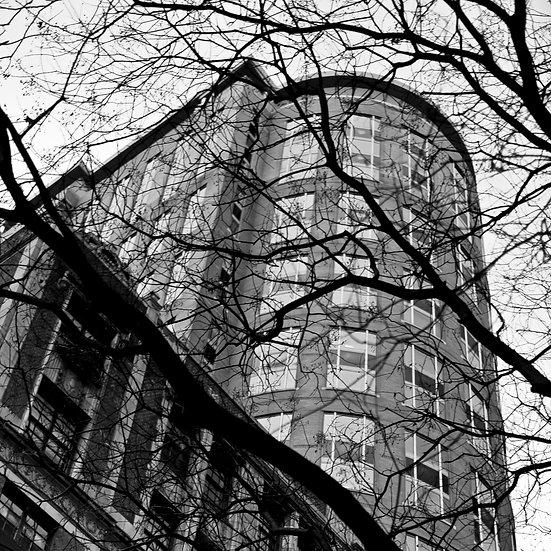 Buildings & Trees 03
