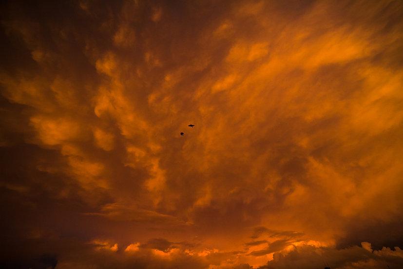 Céu do Cerrado I