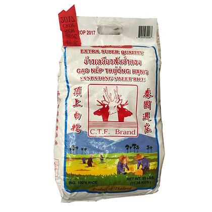 CTF Sanpatong Sweet Rice
