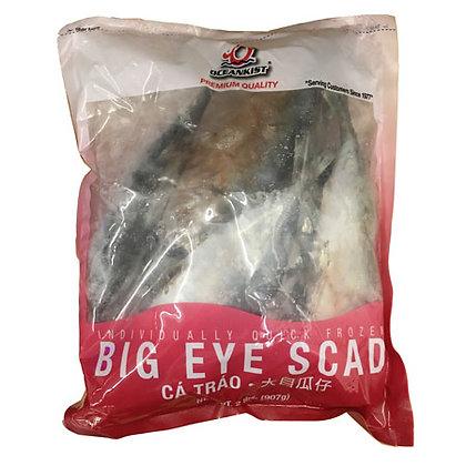 Big Eye Scad