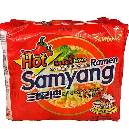 Beef Flavored Ramen
