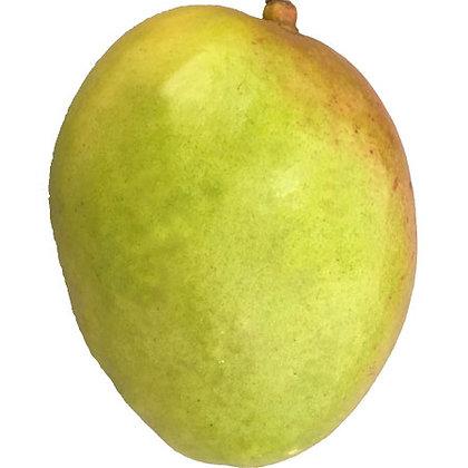 Mexico Mango
