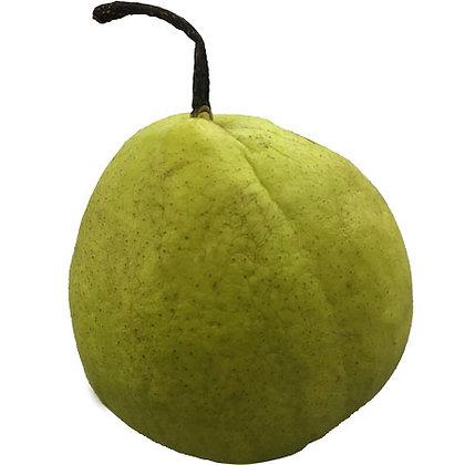 Xingjiang Pear