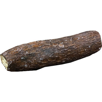 Yucca Root