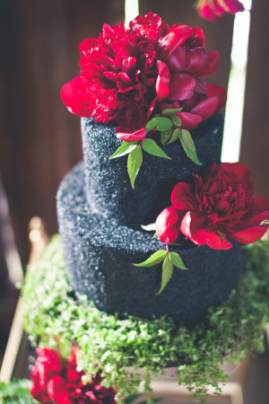 Petals and Hedges - One Summer Day Photography - Cakebee