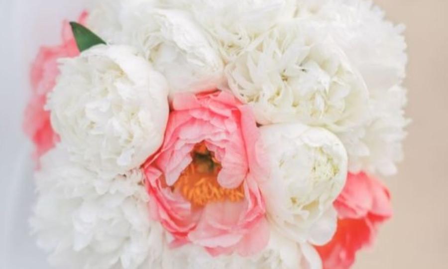 The Coronado Flower Lady - Cavin Elizabeth Photography