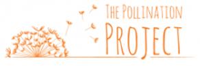 PolinaitonProject.png