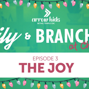 E3 | The Joy | Lily & Branchey at Christmas