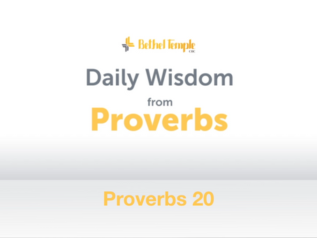 Proverbs 20 | Daily Wisdom from Proverbs