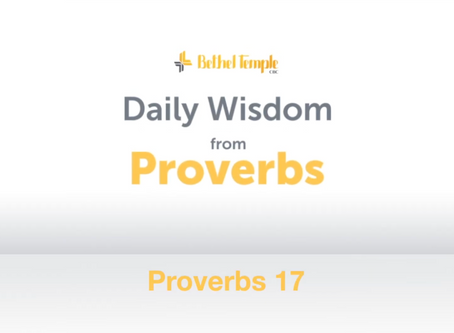 Proverbs 17 | Daily Wisdom from Proverbs