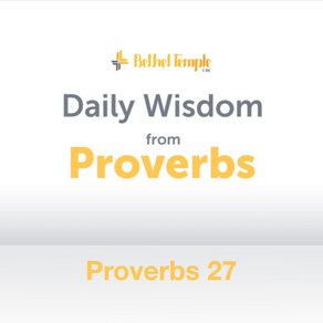 Proverbs 27 | Daily Wisdom from Proverbs