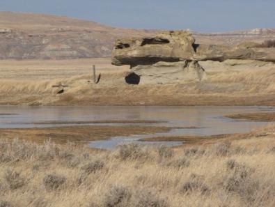 horse creek 8.PNG
