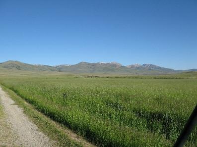 Sheep-Creek-295.jpg