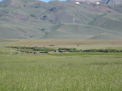 Sheep-Creek-296.jpg