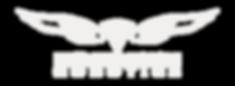Seahawk-robotics-logo-A01.png