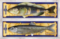 пакеты для копченой рыбы