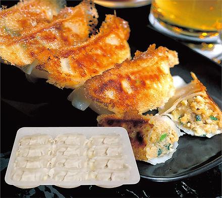 Pork & Chicken Gyoza.jpg