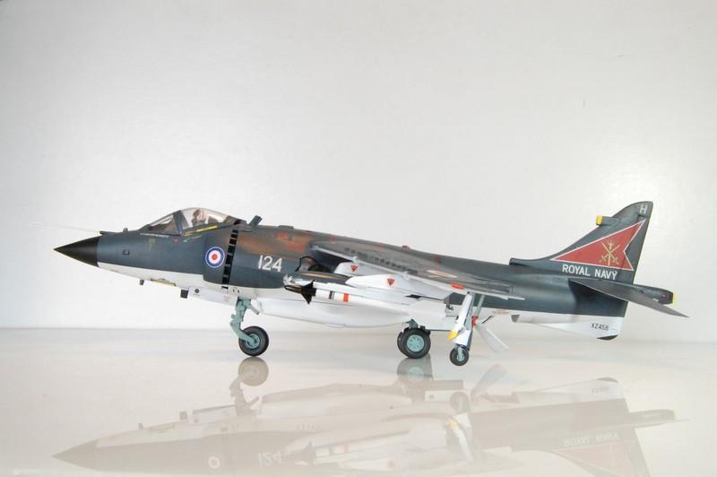 Harrier 01