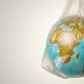 Vídeo: Dia Mundial do Meio Ambiente