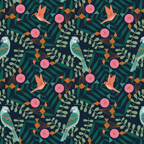 Birds | Our Planet Collection | Dashwood Studio