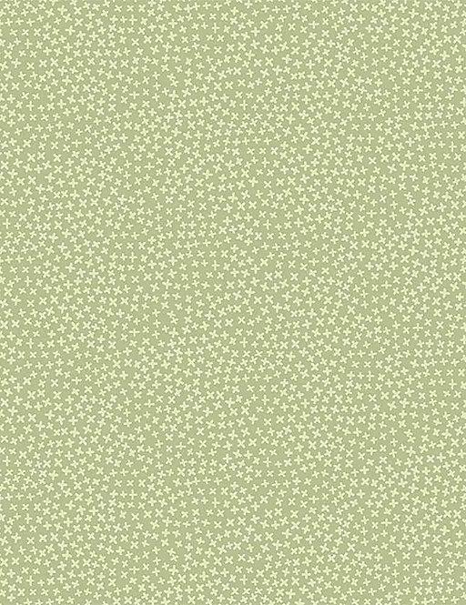 Jax in Lime| Jax Basic Collection | Dear Stella