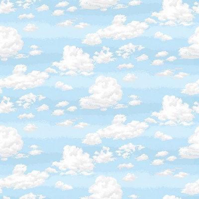 Sky Small   Basic   Makower UK