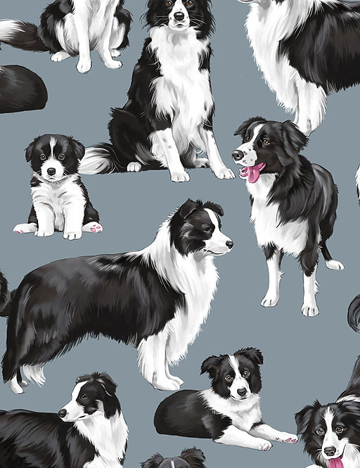 Border Collies on Blue/Grey | Cats and Dogs Collection | Timeless Treasure