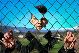Cut Through Fence