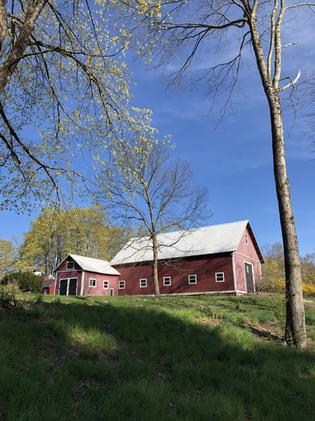 Historical dairy barn