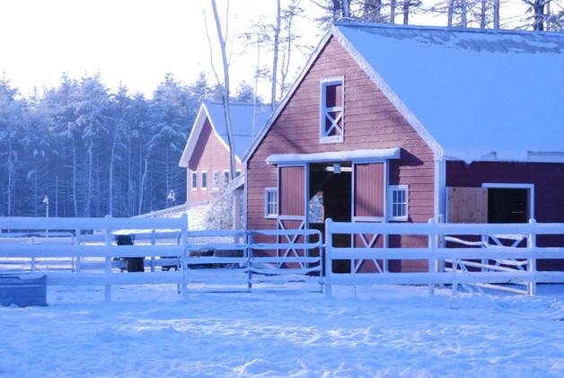 Animal barn in winter