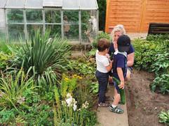 Gemüse ernten im Garten der Tagesmutter
