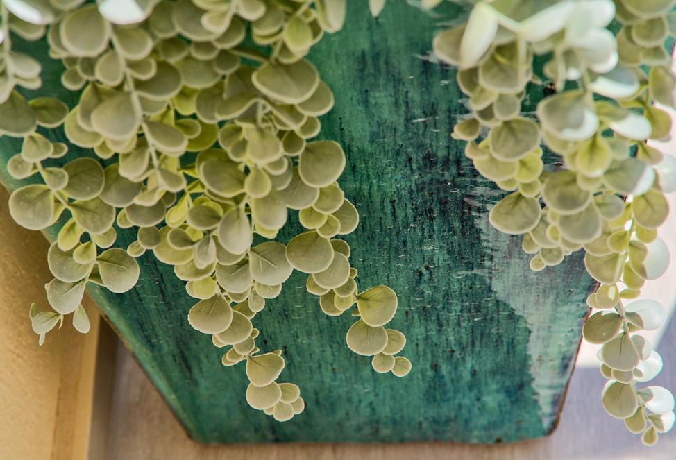 500 textrure plants and pot.jpg