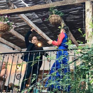 flamenco the farm.jpeg