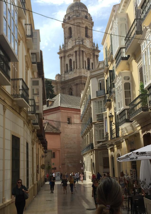 malaga city day trip from marbella.jpg