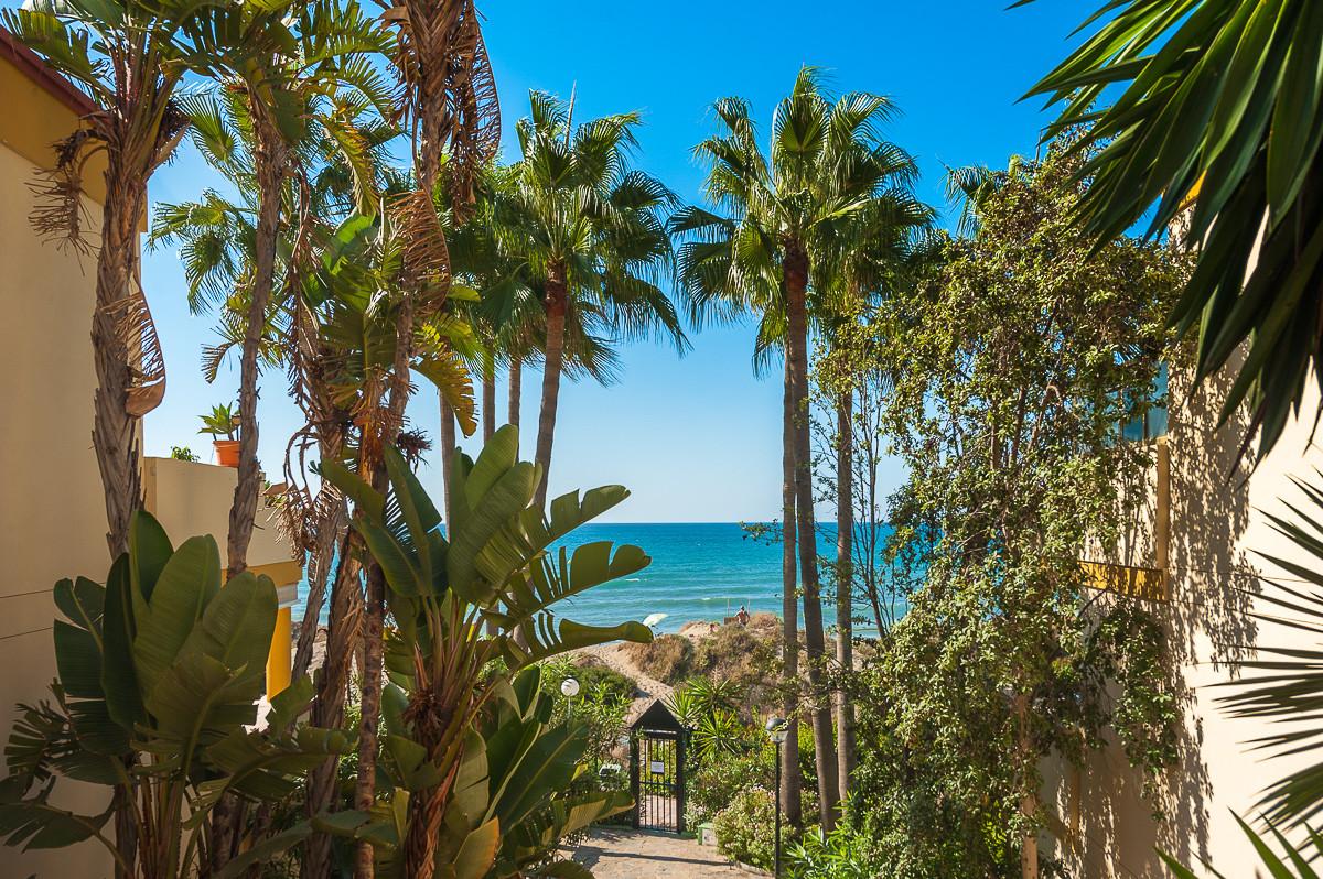 Preciosos jardines junto de Don Carlos Leisure Resort