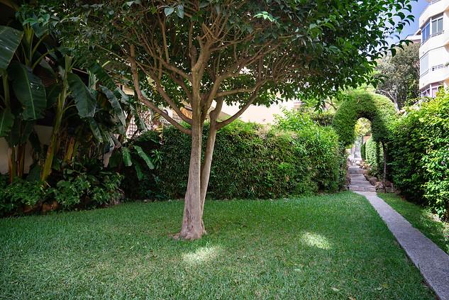 95 jardine marbella piso centro la venen