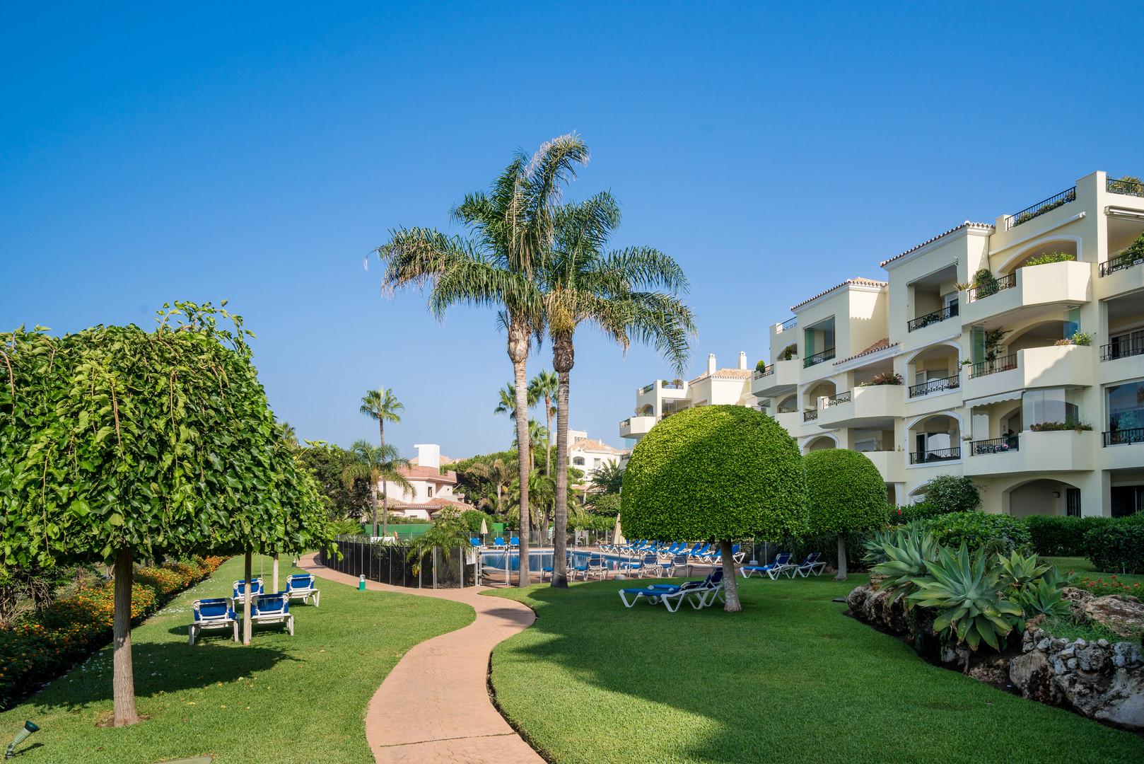 w94 gardens and pool hacienda playa fase