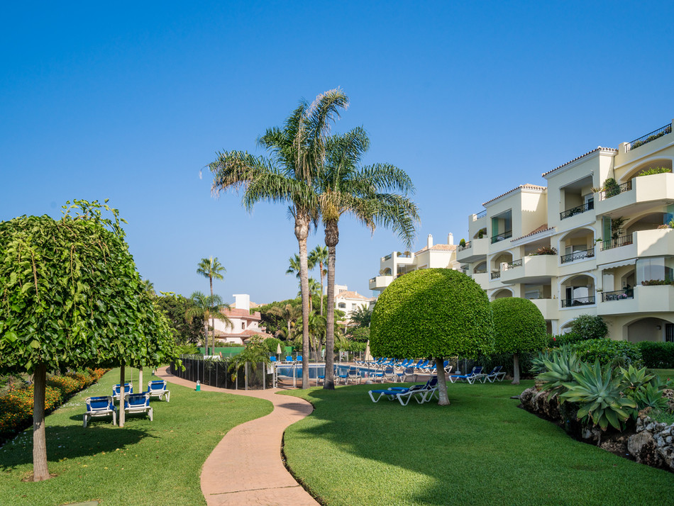 Jardines tropicales junto a la playa