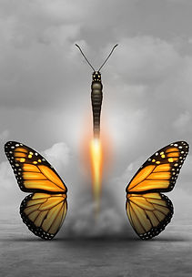 explosive butterfly.jpg